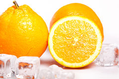 Icy Oranges Royalty Free Stock Photo