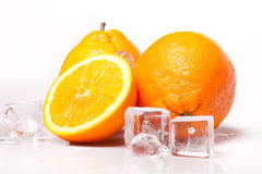 Icy Oranges Stock Photography
