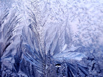 Icy ornate pattern of thin ice on the window Royalty Free Stock Photography