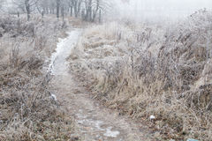 Icy path Royalty Free Stock Photography