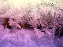 Icy pattern on glass Royalty Free Stock Photo