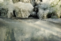 Icy Pond. In a forest royalty free stock photo