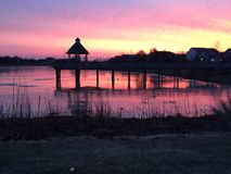 Icy Pond Sunrise Stock Photography