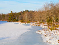 Icy pond in the woods at sunset. Royalty Free Stock Photos