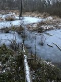 An icy pond in the woods on a winter`s day. The Cleveland Metroparks has a fine set of paths and parks. Cleveland Metroparks is an extensive system of nature royalty free stock images