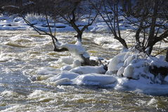 Icy Rapids. Whitewater rushes past a small ice coated island Stock Image