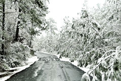 Icy Road royalty free stock photography
