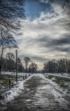 Icy Road. A frozen road in a park during winter Stock Photography
