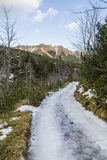 An icy road in the mountains. Stock Images