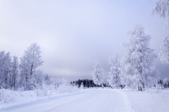 Icy road. Road in a snowy landscape Stock Photography