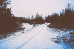 Icy rural landscape with trees and land. retro vintage polaroid Stock Photography