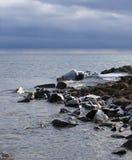 Icy Shore with Rain on the Horizon Stock Photo