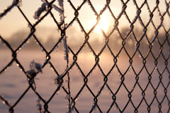 Icy staket Arkivbild