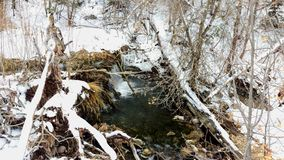 An Icy Stream Flowing across a Frozen Landscape Stock Photos