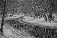 Icy Stream Meandering Through Ryerson Woods Stock Photo