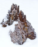 Icy stump like mini mountain Royalty Free Stock Photo