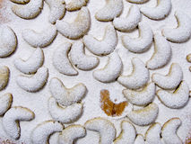 Icy sugared cookies. Cookies covered with powdered sugar on a pastry board with one of them missing royalty free stock images