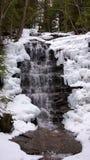 Icy vattenfall i skog Royaltyfri Fotografi