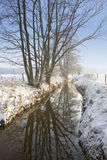 Icy water. Snowy ditch with trees during wintertime in europe Stock Photo