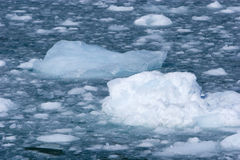 Icy water Royalty Free Stock Photos