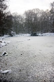 Icy water in winters forest Royalty Free Stock Photos