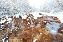 Icy waterfalls at huanglong Royalty Free Stock Images