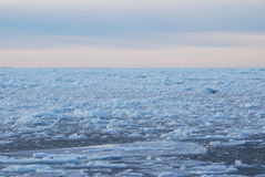 Icy waters. Of the Baltic Sea Royalty Free Stock Photos