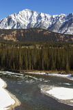 Icy Waters of the Bow River in Banff Royalty Free Stock Photography