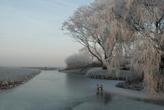 Icy Winter. This picture was made on a beautiful winter day in december royalty free stock photos