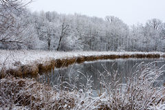 Free Icy Winter Landscape Royalty Free Stock Image - 10475386