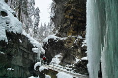 Icy winter landscape in gorge Stock Photography