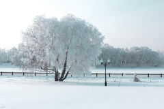 Icy winter quay. Icy winter embankment covered with snow. Russia, Yaroslavl Royalty Free Stock Photography