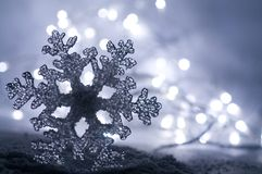 Icy Winter Snowflake Stock Images