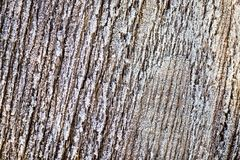 Icy on a wooden board as a background Royalty Free Stock Photos