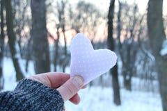 Idée d'hiver d'amour Images libres de droits