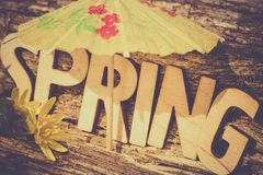 Idée de concept de printemps, environnement de fond de ressort, écologique photos stock