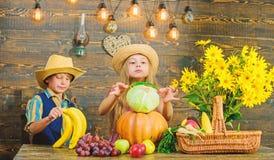 Idée de festival de chute d'école primaire Festival de récolte d'automne Célébrez les vacances de récolte Légumes de jeu d'enfant photographie stock libre de droits