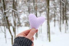 Idée de WinterHolidays d'amour Remettez tenir un coeur sur le fond de la forêt Images libres de droits