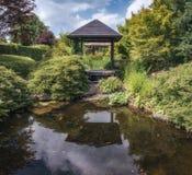 Idéer för trädgård Royaltyfria Bilder
