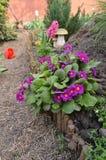 Idéer för trädgårds- landskap Royaltyfria Foton