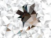 Idérik abstrakt polygonillustration Vektorn fäster ihop konst Detta är sparar av EPS8 formaterar Royaltyfri Foto