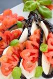 AptitretareAubergine med mozzarellaen, tomaten och basilika Arkivfoton
