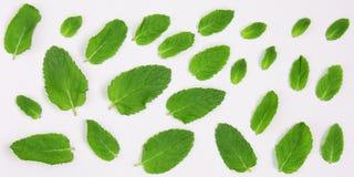Idérik bakgrund av grön mat Begreppet för konditionmatställen, den baserade växten bantar, frutarian sunt äta fotografering för bildbyråer