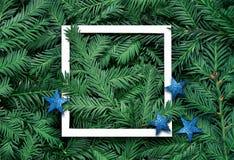 Idérik bakgrund av sörjer filialen med vitbokramen Begrepp för nytt år och för glad jul royaltyfri bild