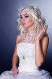 Idérik bild för modell med djupfryst makeup arkivfoton