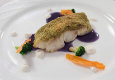 Idérik bot som äter middag maträtten för vit fisk Arkivbild