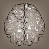 Idérik design för bakgrund för hjärnidébegrepp Arkivbild