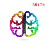 Idérik färgrik vänster hjärna och för idébegrepp för höger hjärna backgr Arkivbilder