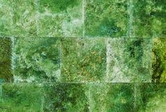 Idérik grön bakgrundsvägg av marmortegelplattor Royaltyfri Fotografi