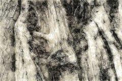 Idérik illustration - abstrakt textur - Wood detalj - den grova blyertspennan skissar Royaltyfri Bild